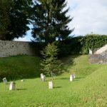 Nur diese Kindergräber sind nach der Umgestaltung des ehemaligen Anstaltsfriedhof erhalten geblieben