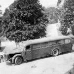 Mit diesen grauen Bussen wurden die Transporte durchgeführt